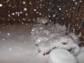 Snowfall 030613 0038