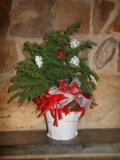 Christmas tree 2014 3