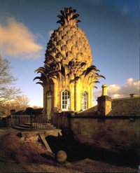 Wench 1761 The pineapple at Dunmore Park (l.  photo National Trust)