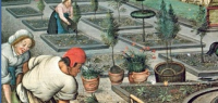 11 peter brueghel detail