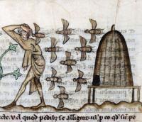 De Natura animalium  Cambrai ca. 1270 Douai  Bibliothèque municipale  ms. 711  fol. 37r